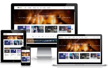 Wordpress主题:日主题ripro虚拟资源主题8.9开心版/免授权